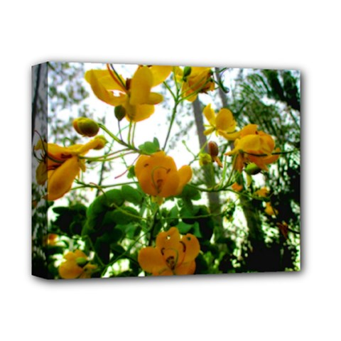 Yellow Flowers Deluxe Canvas 14  x 11  (Framed) by SaraThePixelPixie