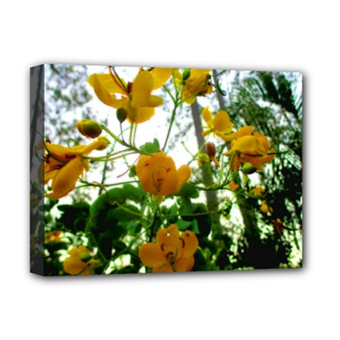 Yellow Flowers Deluxe Canvas 16  x 12  (Framed)