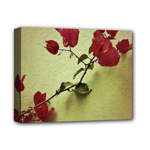 Santa Rita Flower Deluxe Canvas 14  X 11  (framed) by dflcprints
