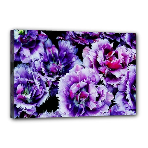 Purple Wildflowers Of Hope Canvas 18  X 12  (framed) by FunWithFibro
