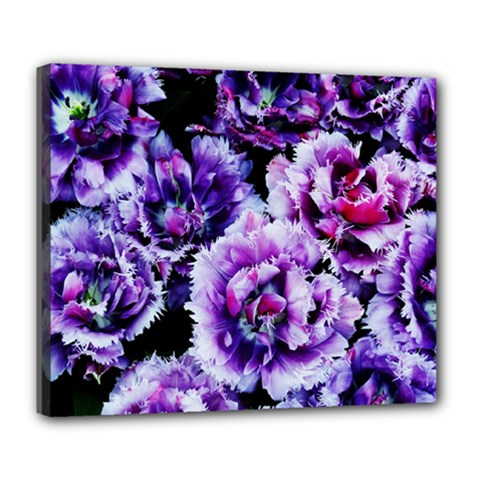 Purple Wildflowers Of Hope Deluxe Canvas 24  X 20  (framed) by FunWithFibro