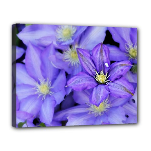 Purple Wildflowers For Fms Canvas 14  X 11  (framed) by FunWithFibro