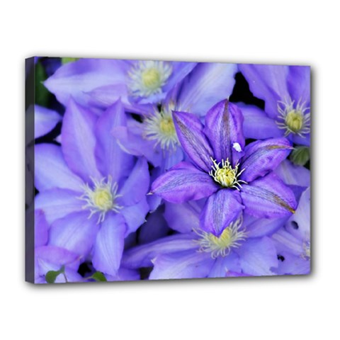 Purple Wildflowers For Fms Canvas 16  X 12  (framed) by FunWithFibro