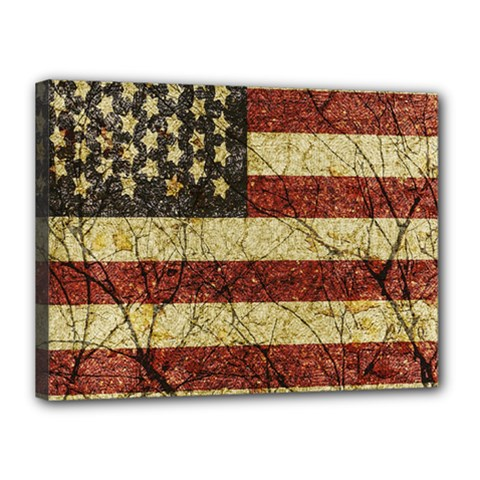 Vinatge American Roots Canvas 16  X 12  (framed) by dflcprints