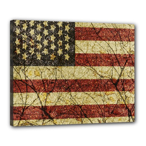 Vinatge American Roots Canvas 20  X 16  (framed) by dflcprints