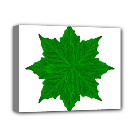 Decorative Ornament Isolated Plants Deluxe Canvas 14  X 11  (framed) by dflcprints