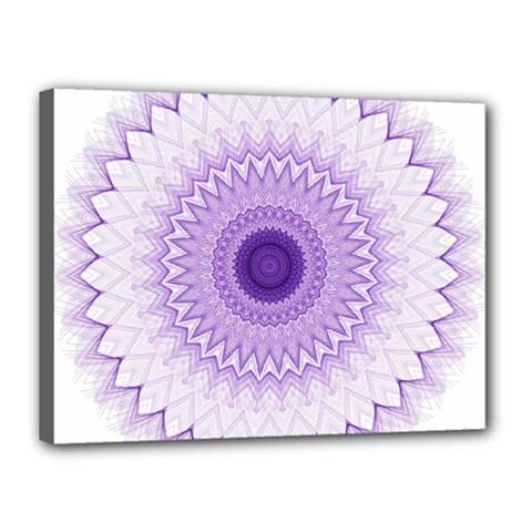 Mandala Canvas 16  X 12  (framed) by Siebenhuehner