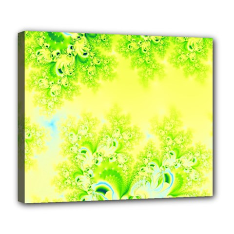Sunny Spring Frost Fractal Deluxe Canvas 24  X 20  (framed) by Artist4God