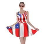 USA Skater Dress