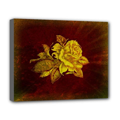 Rose Deluxe Canvas 20  X 16  (framed) by ankasdesigns