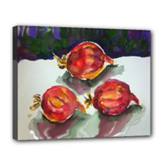 Red Onion - Canvas 14  x 11  (Stretched)