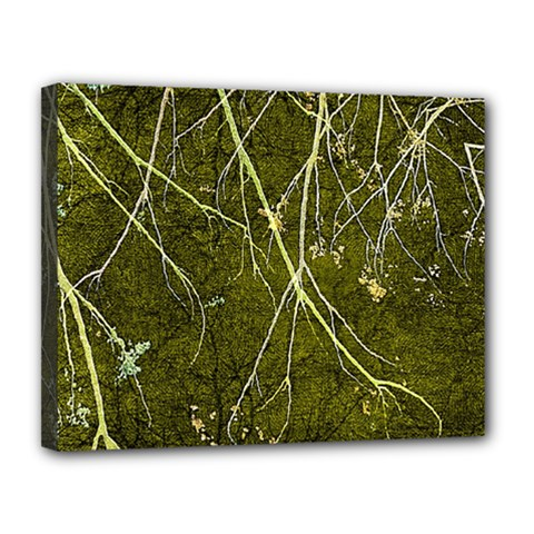 Wild Nature Collage Print Canvas 14  X 11  (framed) by dflcprints