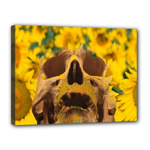 Sunflowers Canvas 16  X 12  (framed) by icarusismartdesigns