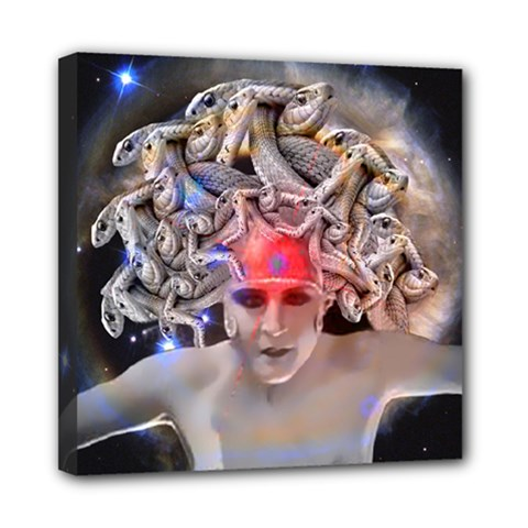 Medusa Mini Canvas 8  X 8  (framed) by icarusismartdesigns