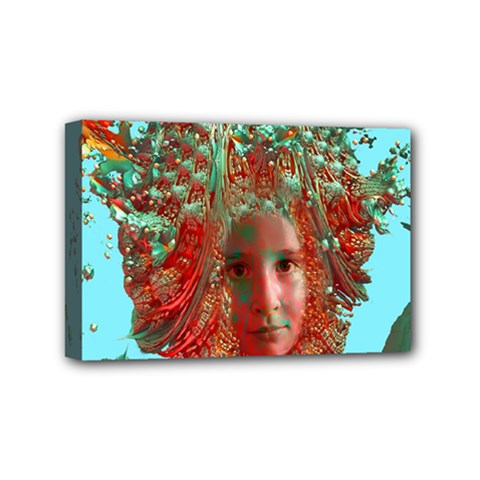 Flower Horizon Mini Canvas 6  X 4  (framed) by icarusismartdesigns