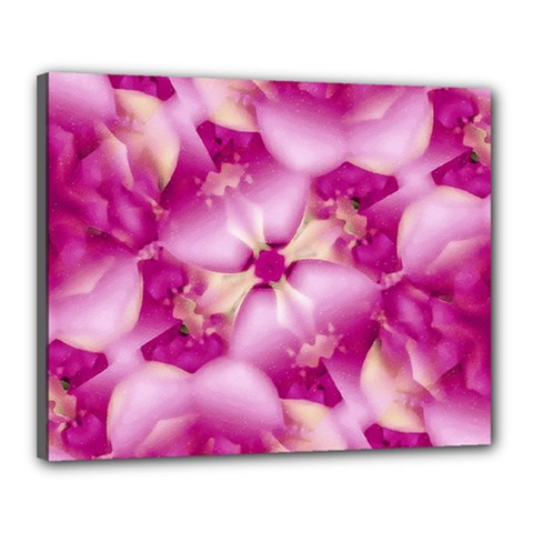 Beauty Pink Abstract Design Canvas 20  X 16  (framed) by dflcprints