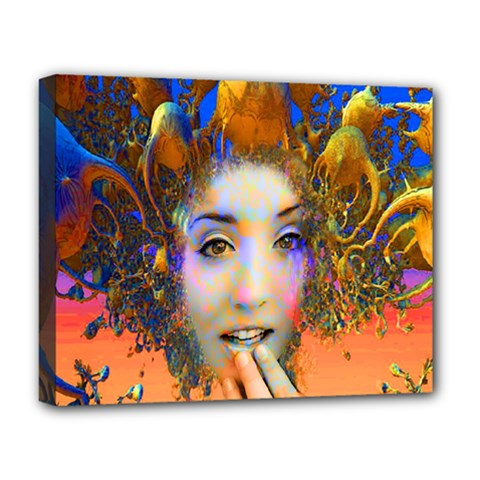 Organic Medusa Deluxe Canvas 20  X 16  (framed) by icarusismartdesigns