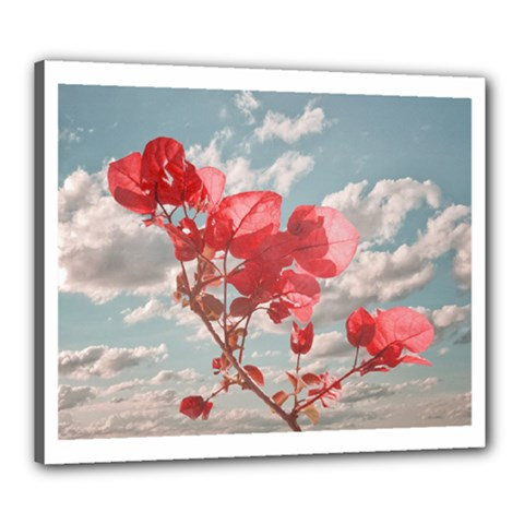 Flowers In The Sky Canvas 24  X 20  (framed) by dflcprints