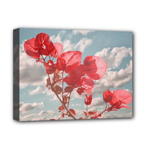 Flowers In The Sky Deluxe Canvas 16  X 12  (framed)  by dflcprints