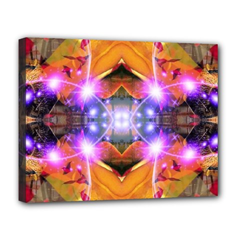 Abstract Flower Canvas 14  X 11  (framed) by icarusismartdesigns