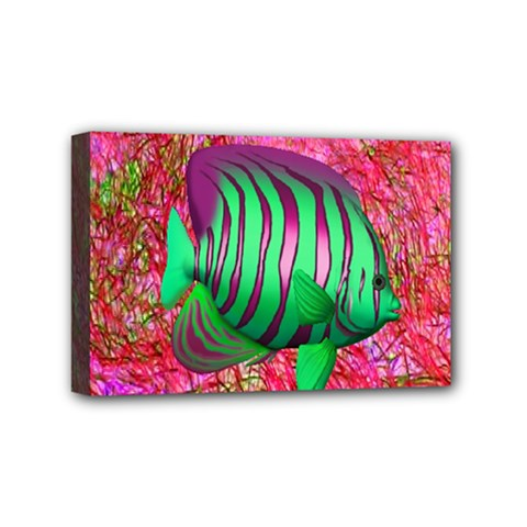 Fish Mini Canvas 6  X 4  (framed) by icarusismartdesigns
