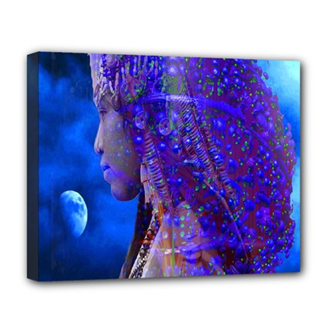 Moon Shadow Deluxe Canvas 20  X 16  (framed) by icarusismartdesigns