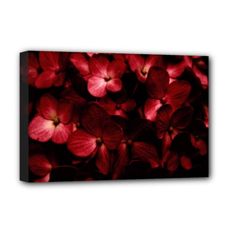 Red Flowers Bouquet In Black Background Photography Deluxe Canvas 18  X 12  (framed) by dflcprints