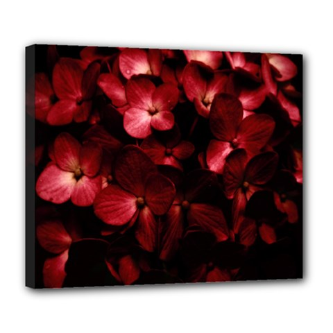 Red Flowers Bouquet In Black Background Photography Deluxe Canvas 24  X 20  (framed) by dflcprints