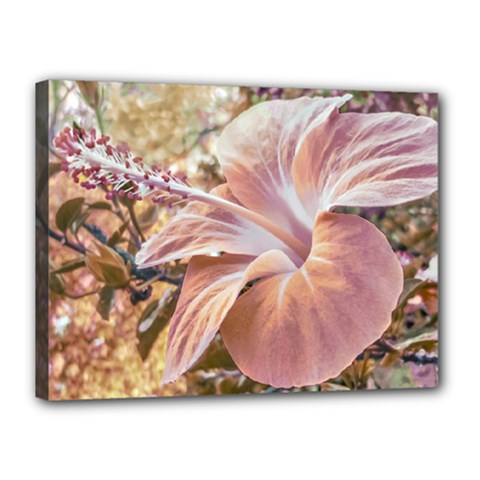 Fantasy Colors Hibiscus Flower Digital Photography Canvas 16  X 12  (framed) by dflcprints