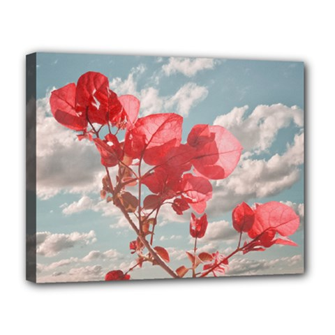 Flowers In The Sky Canvas 14  X 11  (framed) by dflcprints