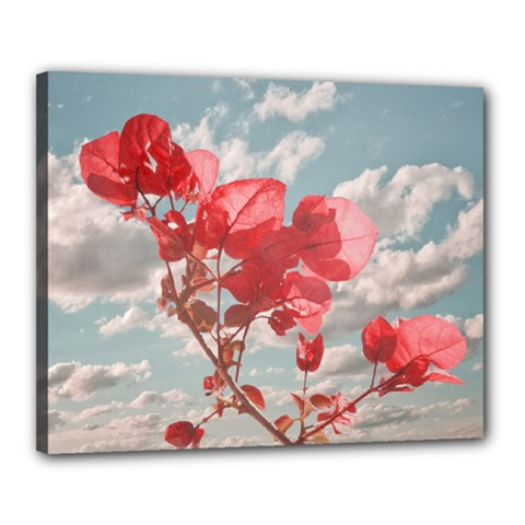 Flowers In The Sky Canvas 20  x 16  (Framed) by dflcprints