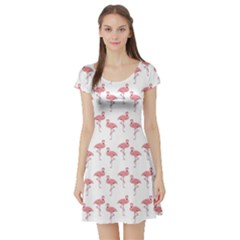 Pink Flamingo Pattern Short Sleeved Skater Dress by CrypticFragmentsColors