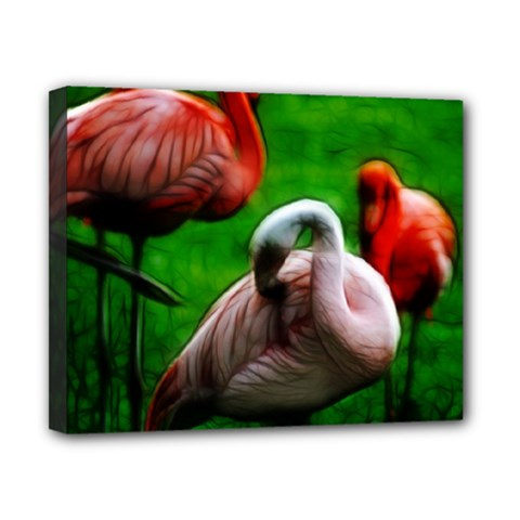 3pinkflamingos Canvas 10  X 8  (framed) by bloomingvinedesign