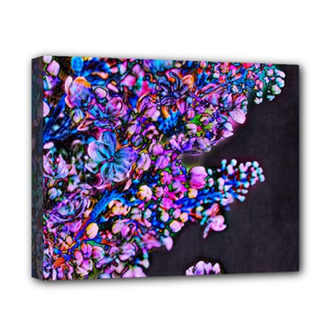 Abstract Lilacs Canvas 10  X 8  (framed) by bloomingvinedesign