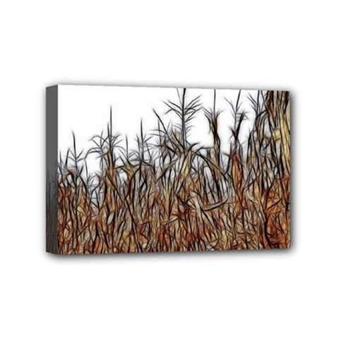 Abstract Of A Cornfield Mini Canvas 6  X 4  (framed)