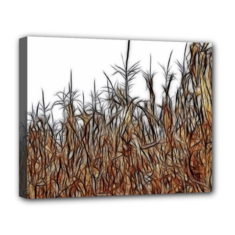Abstract Of A Cornfield Deluxe Canvas 20  X 16  (framed) by bloomingvinedesign