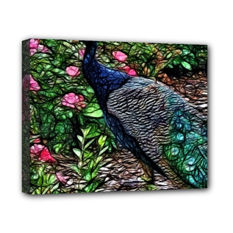 Peacock With Roses Canvas 10  X 8  (framed) by bloomingvinedesign