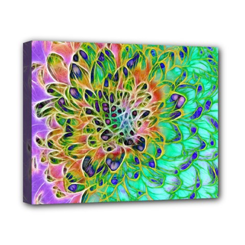 Abstract Peacock Chrysanthemum Canvas 10  X 8  (framed) by bloomingvinedesign