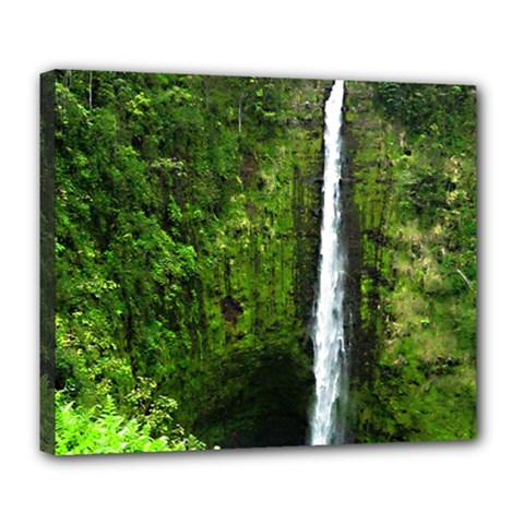 Akaka Falls Deluxe Canvas 24  X 20  (framed) by bloomingvinedesign