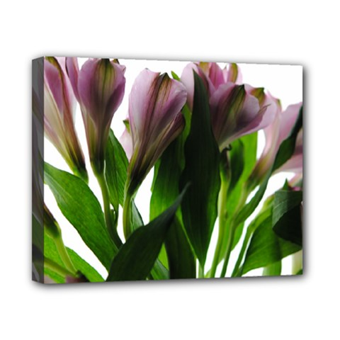 Pink Flowers On White Canvas 10  X 8  (framed) by bloomingvinedesign