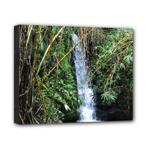 Bamboo Waterfall Canvas 10  X 8  (framed) by bloomingvinedesign