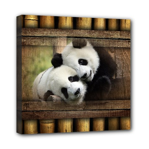 Panda Love Mini Canvas 8  X 8  (framed) by TheWowFactor