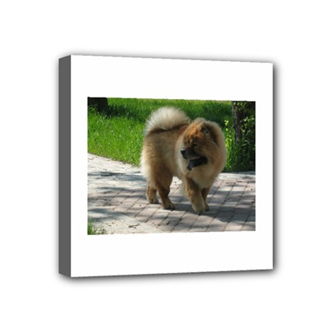 Chow Chow Full Mini Canvas 4  x 4  (Framed) by TailWags