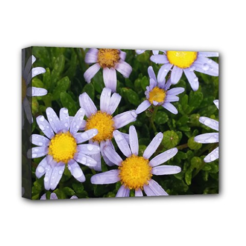 Yellow White Daisy Flowers Deluxe Canvas 16  X 12  (framed)  by yoursparklingshop