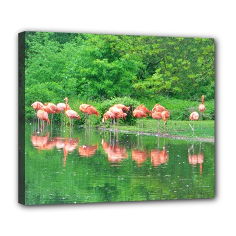 Flamingo Birds At Lake Deluxe Canvas 24  X 20  (framed) by yoursparklingshop