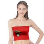 StoneHeart tubetop - Tube Top