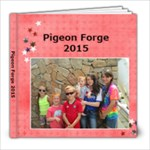 Pigeon Forge 2015 - 8x8 Photo Book (20 pages)