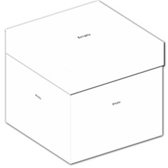 Mini Bugs And Mini Beasts Sq Storage Stool 12   by ScienceGeek