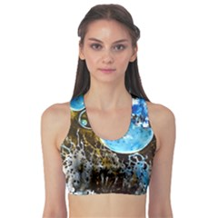Space Horses Sports Bra