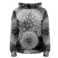 Modern Daffodil Seed Bloom Women s Pullover Hoodies by timelessartoncanvas